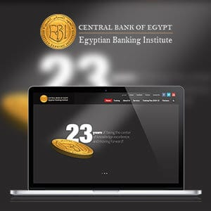 EGYPTIAN BANKING INSTITUTE
