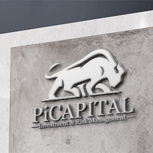 picapital branding